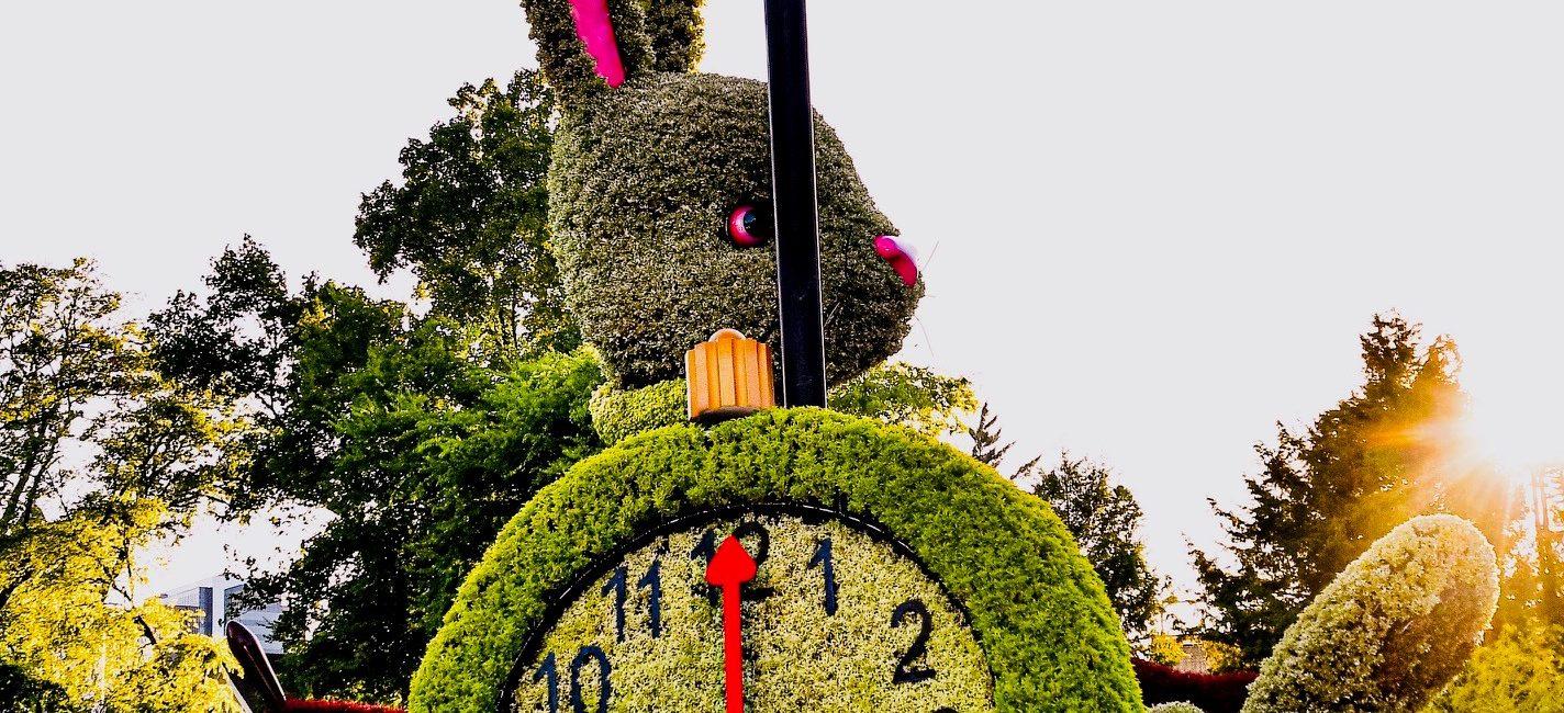 Imaginary Worlds: Alice's Wonderland
