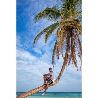Perched . . . . . . . . . . . . . . . . . . . . . . . . . . . . . . #tulum #tulummexico #méxico #photo #photooftheday #travel #travelgram #me #travelblogger #picoftheday #beach #palmtrees #tweegram #bestoftheday #swag #igers #igdaily #instdaily #instacool #youngblacktravelersblog #dope #sun #life #igtravel #iamatraveler