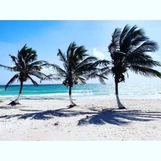 3 apostles  . . . . . . . . . . . . . . . . . . . . #tulum #tulummexico #photography #beach #palmtrees #ocean #photo #photooftheday #picoftheday #igers #igdaily #beautiful #nofilter #travel #travelphotography #travelblogger #travelgram #instatravel #dope #wanderlust #tweegram #instacool #bestoftheday #iamatraveler #humpday #igtravel