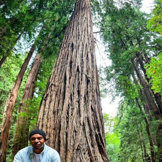 Growth . . . . . . . . . . . . . . . . . . . . . . . . . . . . . . . #nature #outdoors #photography #naturephotography #photo #igers #photooftheday #picoftheday #me #travelblogger #travelphotography #travelgram #instatravel #amazing #dope #instacool #tweegram #trees #redwoods #usa #wanderlust #bestoftheday #california #sanfrancisco #instadaily #shotoniphone