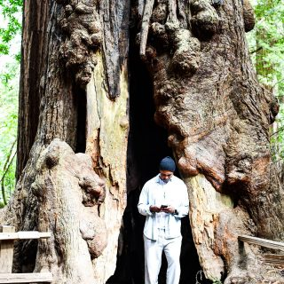 Stumped . . . . . . . . . . . . . . . . . . . . . . . . . . . . #travel #outdoors #travelgram #igers #nature #traveltheworld #instacool #travelblogger #explore #instadaily #redwoods #trees #me #dope #swag #tweegram #bestoftheday #amazing #california #sanfrancisco #usa #instapic #photooftheday #photo #picoftheday #wanderlust