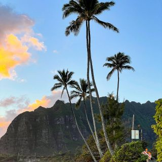 Sunrise  . . . . . . . . . . . . . . . . . . . . . . . . #oahu #hawaii #sunrise #photography #photo #photooftheday #instapic #picoftheday #nofilter #beautiful #beach #ocean #palmtrees #nofilter #igers #igtravel #travel #travelgram #instatravel #travelblogger #dope #wanderlust #tweegram #instadaily #bestoftheday #shotoniphone #mood